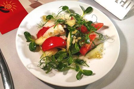 Салат с микрозеленью