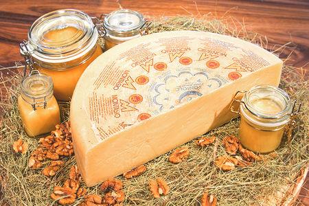 Сыр Монтазио