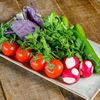 Фото к позиции меню Свежие овощи с зеленью