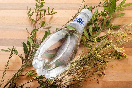 Вода минеральная газированная Серябь в бутылке