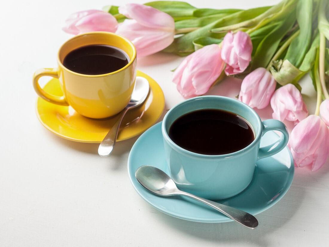Ursa coffee