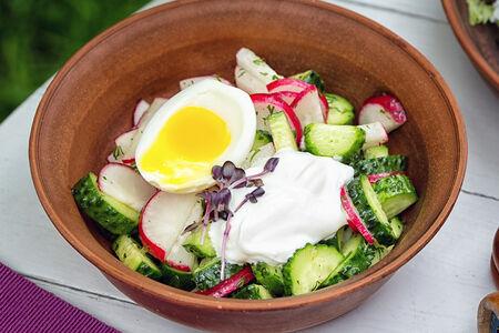 СП Дачный салат из редиса и огурца