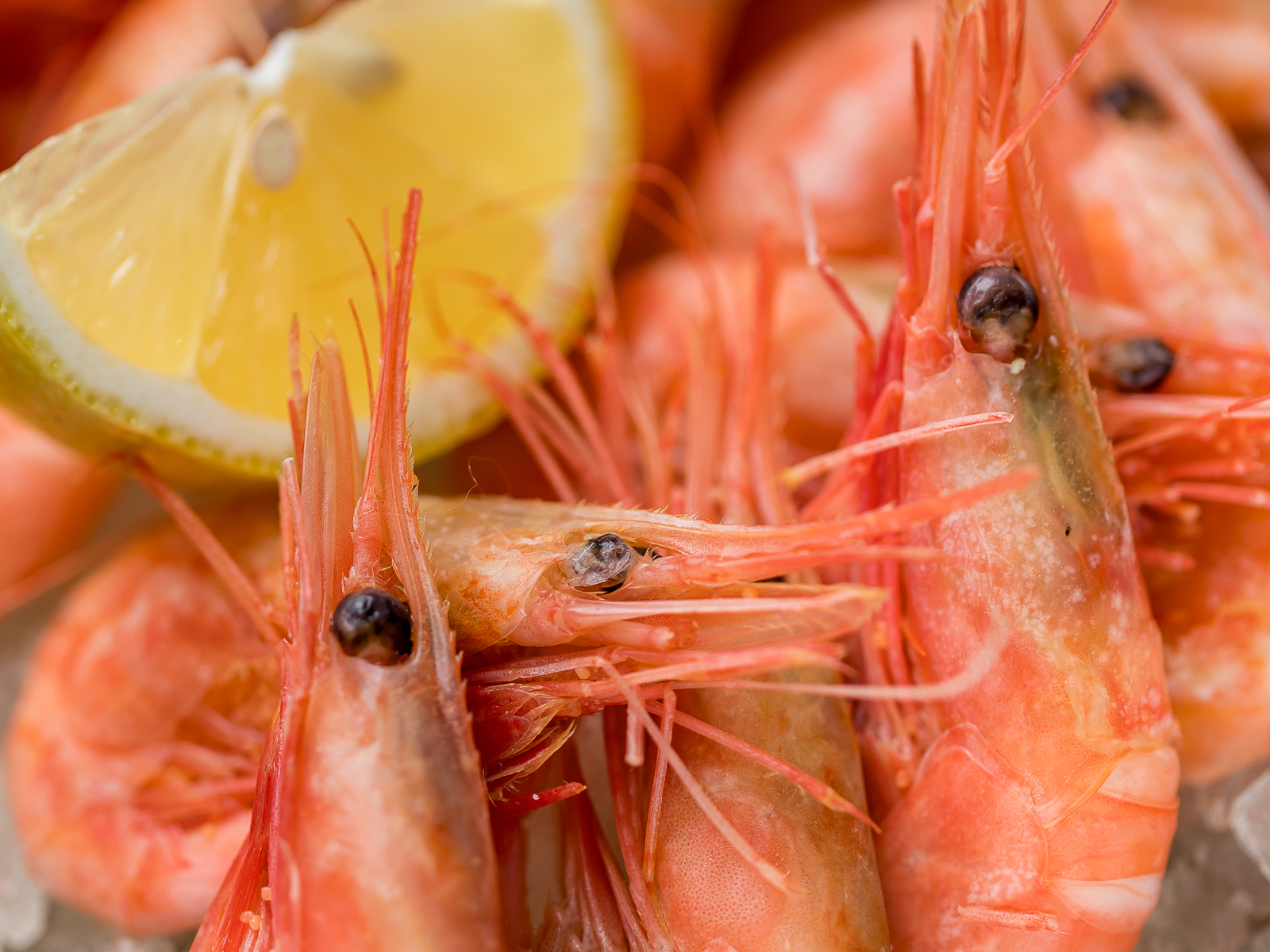 Креветки жареные в чесночном соусе