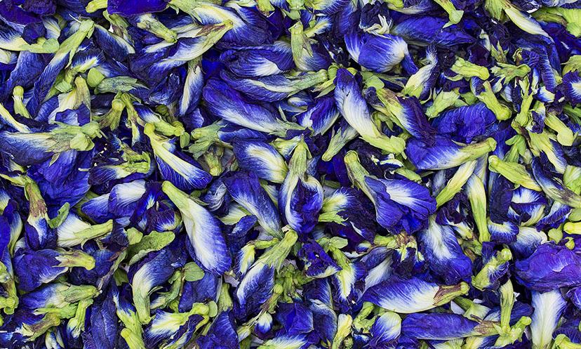 Тайский синий чай Ачан